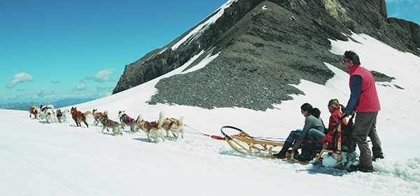Dogsled Rides